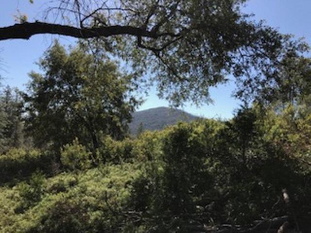 0-Parcel 1 Worman Road, Ahwahnee, CA 93601 (#518545) :: FresYes Realty