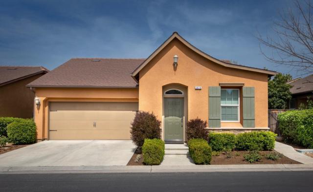 3675 Trenton Lane, Clovis, CA 93619 (#519532) :: Raymer Realty Group
