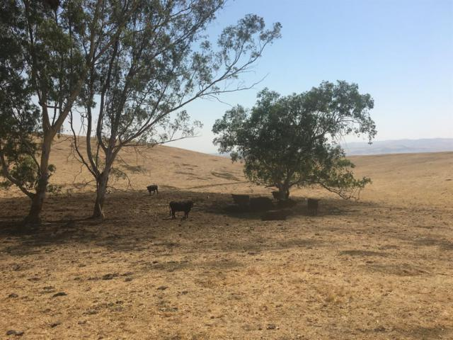 58200 Little Panoche Road, Firebaugh, CA 93622 (#519600) :: FresYes Realty