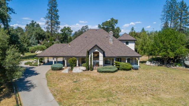 44579 44579 Riverbend Ct, Ahwahnee, CA 93601 (#520494) :: Raymer Realty Group