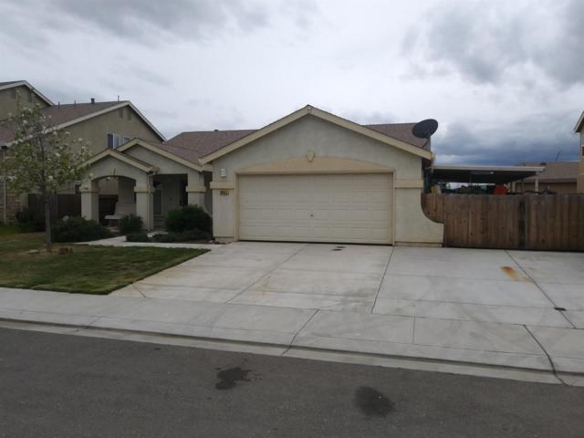 29411 W Camino Court, Santa Nella, CA 95322 (#520837) :: FresYes Realty