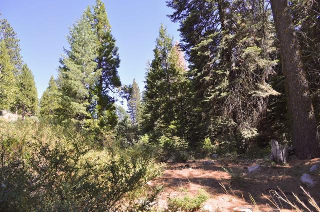 40541 Wild Rose Lane, Shaver Lake, CA 93664 (#521296) :: FresYes Realty
