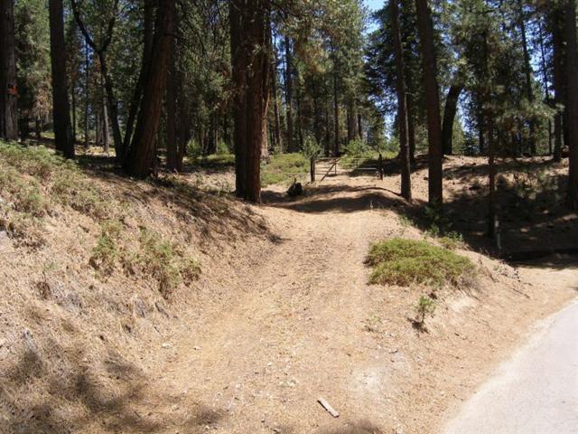 5-Acres Cressmans Road, Shaver Lake, CA 93664 (#521434) :: FresYes Realty