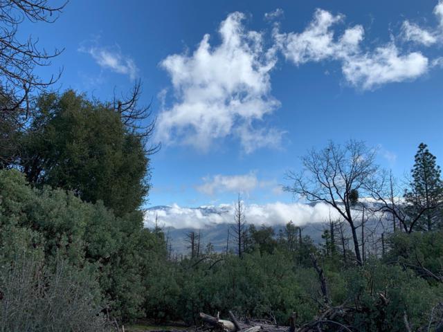 0 Cedar Springs, Auberry, CA 93602 (#521484) :: FresYes Realty
