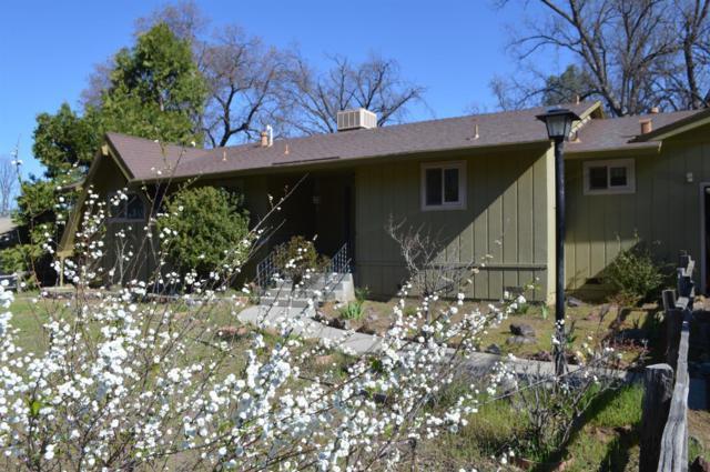 48883 Royal Oaks Drive, Oakhurst, CA 93644 (#521590) :: FresYes Realty