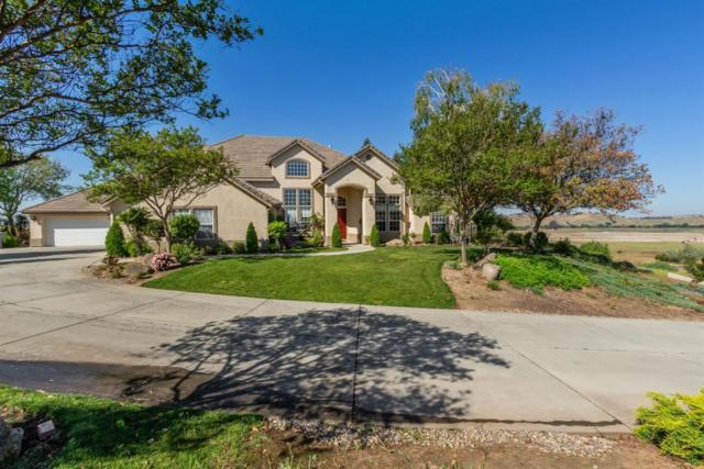 15264 Mesa View Avenue, Friant, CA 93626 (#521779) :: FresYes Realty