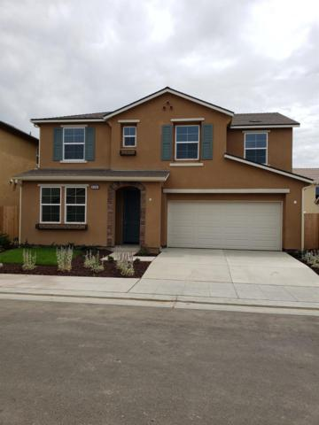 6369 W Donner Avenue, Fresno, CA 03723 (#523176) :: Realty Concepts