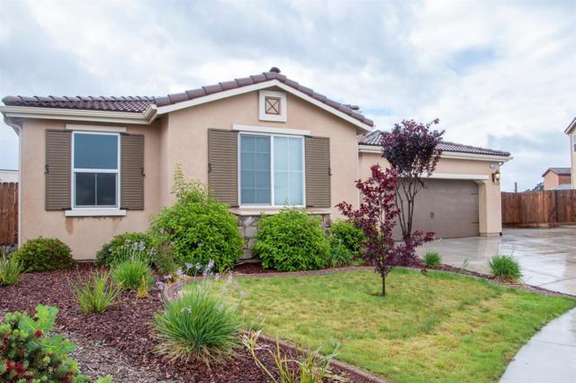 1200 N Zachary Street, Visalia, CA 93291 (#523415) :: FresYes Realty