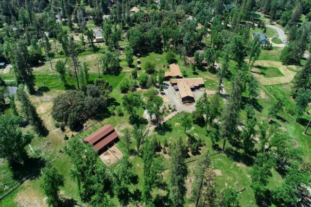 51764 Road 423, Oakhurst, CA 93644 (#523446) :: Raymer Realty Group