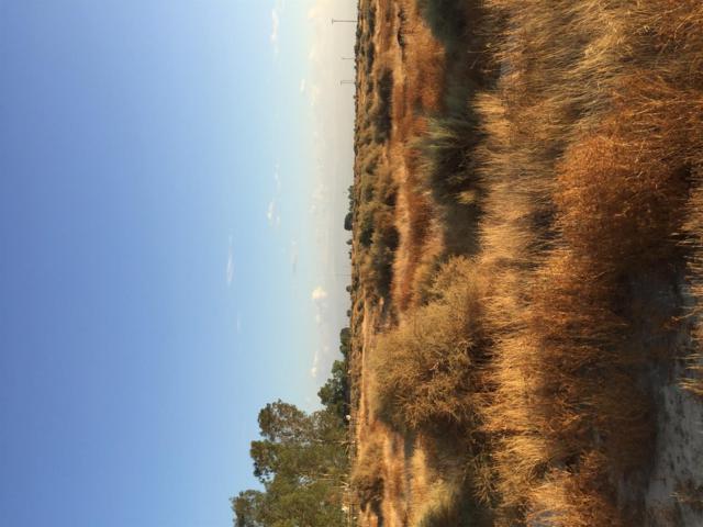0 E White Lane, Bakersfield, CA 93306 (#525154) :: FresYes Realty