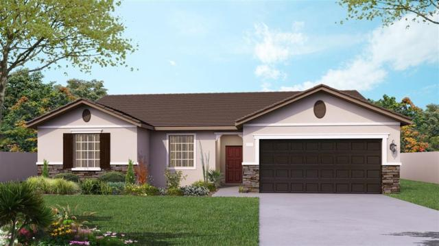 3889 Earl Street, Riverdale, CA 93656 (#525810) :: Your Fresno Realtors | RE/MAX Gold