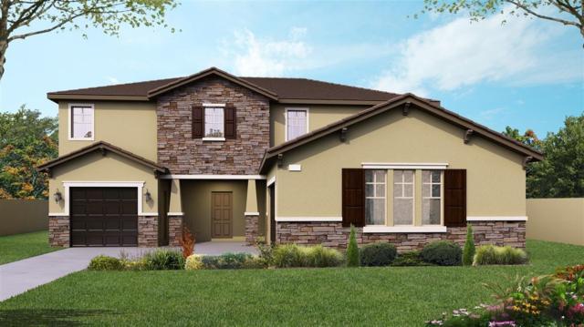 3911 Earl Street, Riverdale, CA 93656 (#525816) :: Your Fresno Realtors | RE/MAX Gold