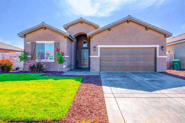 910 S Michelle Avenue, Kerman, CA 93630 (#526713) :: Raymer Realty Group