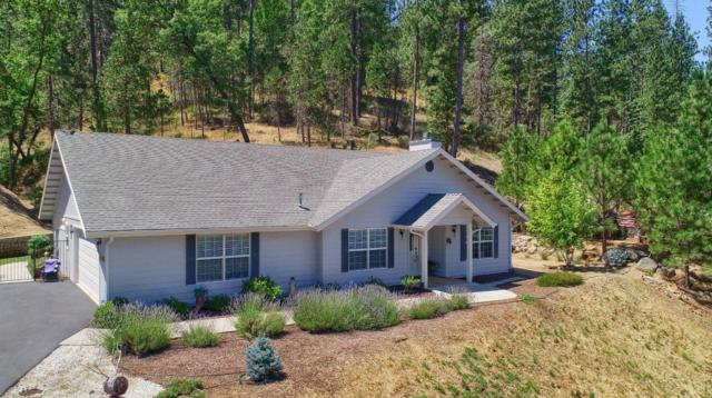 48818 Holly Lane, Coarsegold, CA 93614 (#527097) :: Twiss Realty