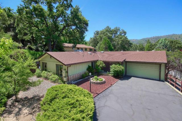 40888 Goldside Drive, Oakhurst, CA 93644 (#527113) :: Raymer Realty Group