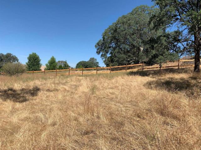 0-Lot 61 Lookout Mountain Lane, Coarsegold, CA 93614 (#527229) :: Twiss Realty