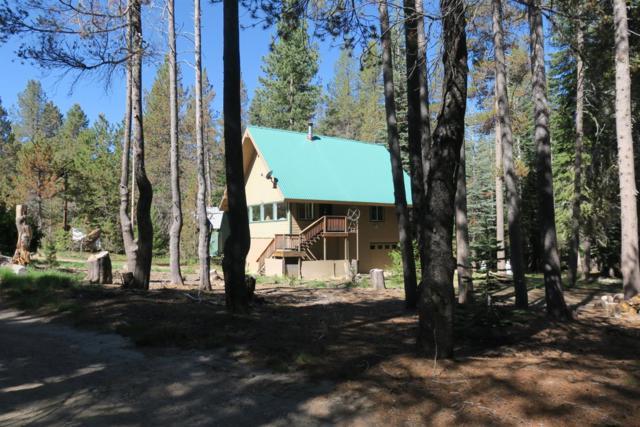 58744 Shuteye Road, Bass Lake, CA 93604 (#527857) :: Raymer Realty Group