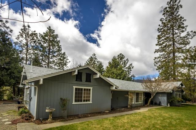 53645 Moic Drive, North Fork, CA 93643 (#528023) :: Raymer Realty Group