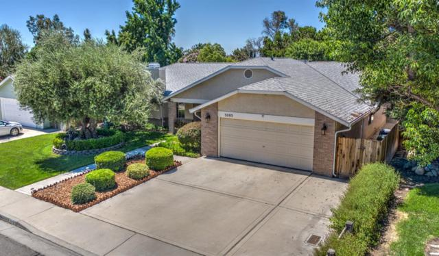 3093 Beech Drive, Merced, CA 95301 (#528085) :: Raymer Realty Group