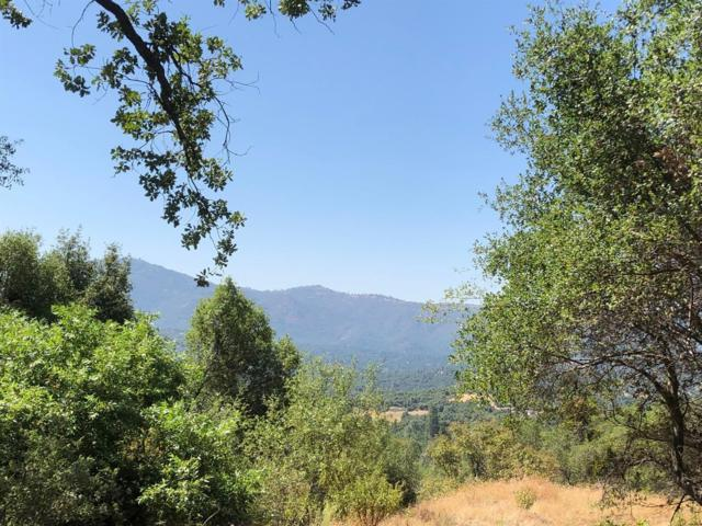 2 Lash Lane, Ahwahnee, CA 93601 (#528376) :: Raymer Realty Group