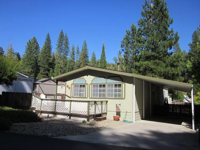 39737 Road 274, Bass Lake, CA 93604 (#528573) :: Raymer Realty Group