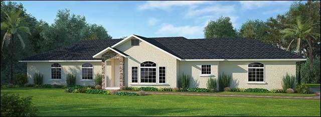 17195 Custer, Dos Palos, CA 93620 (#530514) :: Your Fresno Realtors   RE/MAX Gold