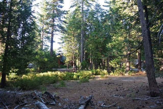 0 Rock Ledge Road, Shaver Lake, CA 93664 (#532624) :: Raymer Realty Group