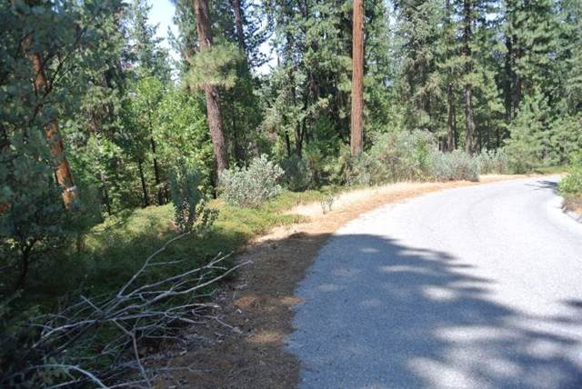 30290 W Solitude Lane, Shaver Lake, CA 93664 (#532720) :: Raymer Realty Group