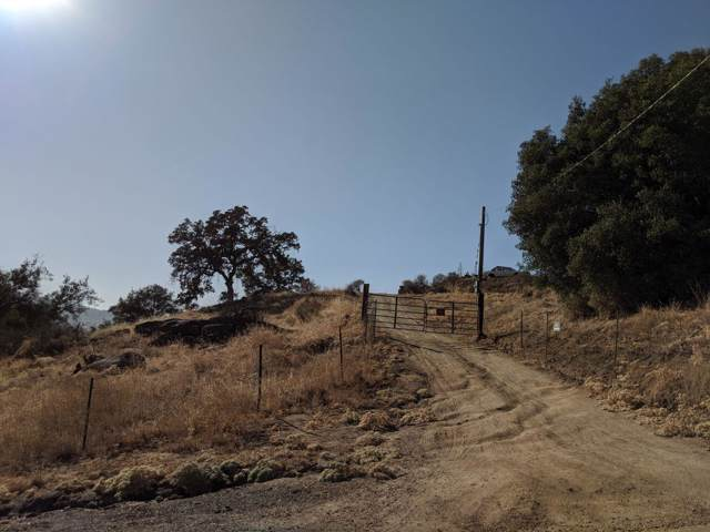 38675 Pepperweed Road, Squaw Valley, CA 93675 (#532979) :: FresYes Realty