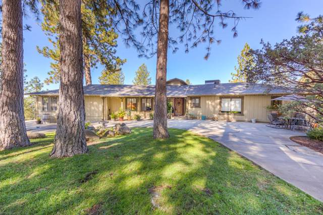 52052 Road 426, Oakhurst, CA 93644 (#533161) :: Raymer Realty Group