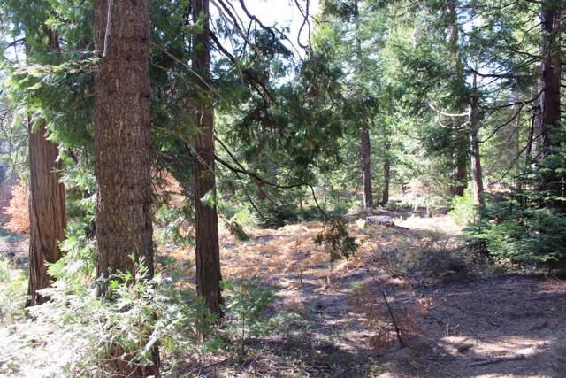0 Timber Ridge Lane Lot 7, Shaver Lake, CA 93664 (#533830) :: FresYes Realty