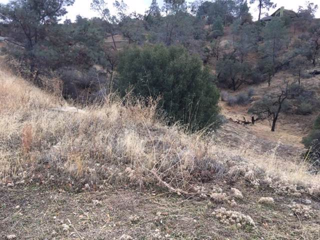 0-Lot 1570 Lilley Mountain Drive, Coarsegold, CA 93614 (#534641) :: FresYes Realty