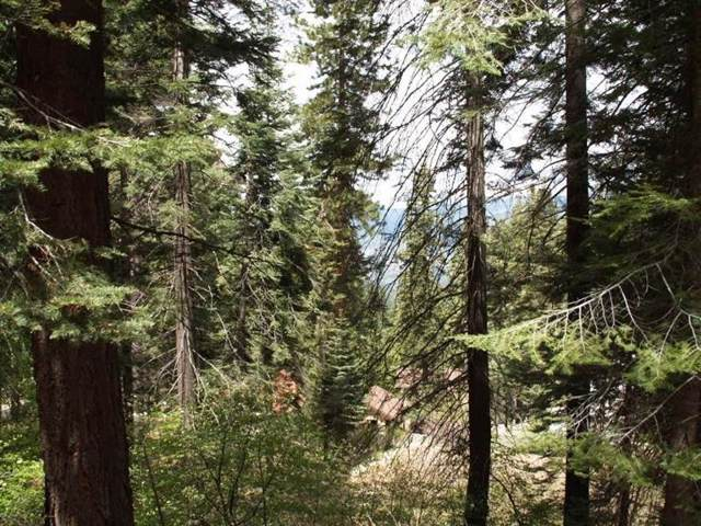 7413 Henness Ridge Road, Yosemite West, CA 95389 (#535564) :: Twiss Realty
