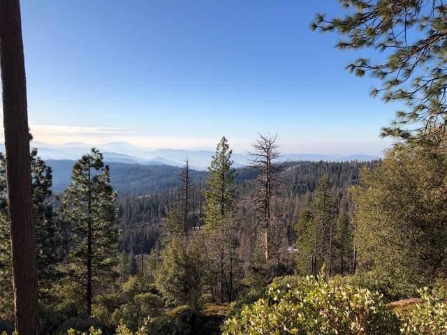 42629 Canyon Vista Lane, Shaver Lake, CA 93664 (#535787) :: Twiss Realty