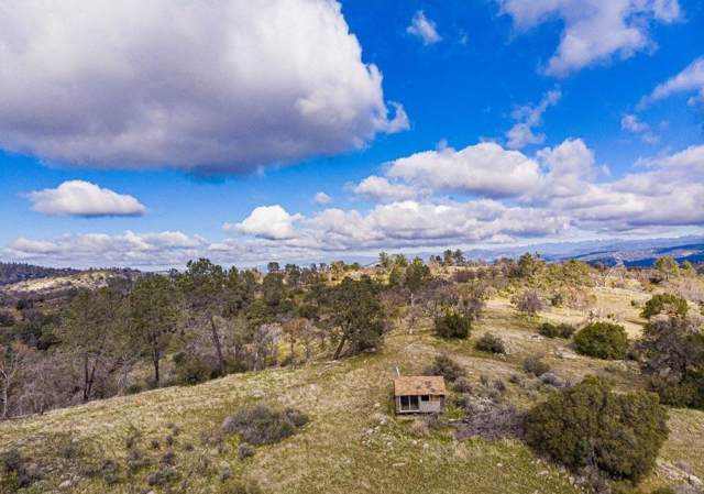0-40 AC Bluebird Trail, Coarsegold, CA 93614 (#535954) :: Twiss Realty