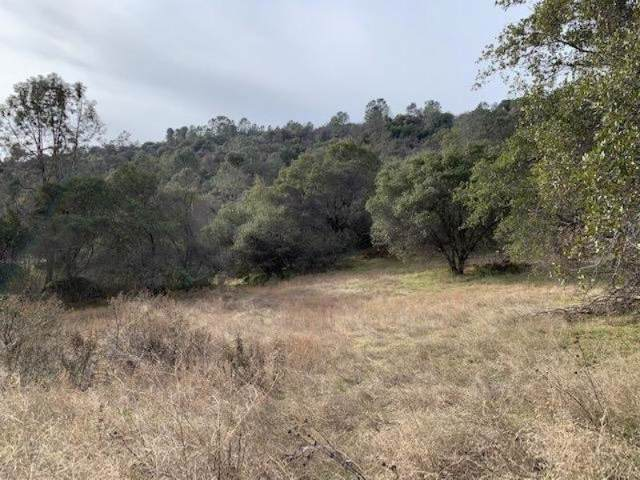 0 Duncan Canyon Road, Tollhouse, CA 93667 (#536053) :: Raymer Realty Group
