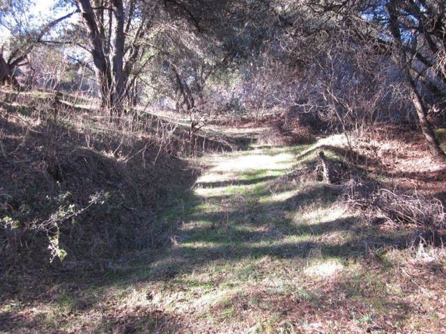 0-1.33AC Forest Park Lane, Oakhurst, CA 93644 (#536388) :: FresYes Realty