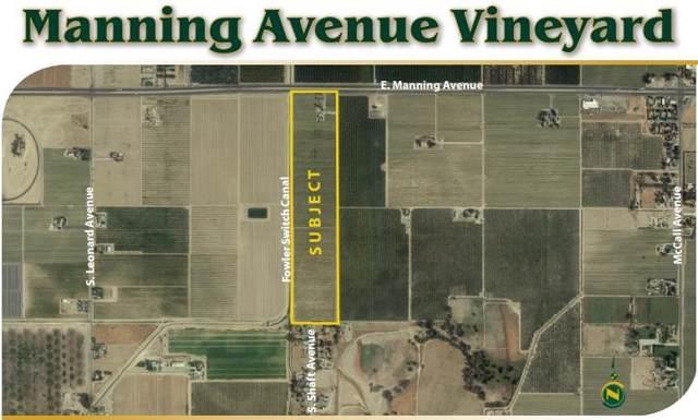 9073 E Manning Avenue, Selma, CA 93662 (#536468) :: FresYes Realty