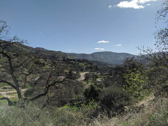38373 Squaw Valley Road, Squaw Valley, CA 93675 (#536825) :: Twiss Realty