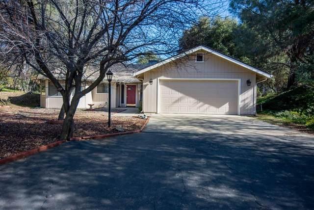 40599 Road 425A, Oakhurst, CA 93644 (#537062) :: Twiss Realty