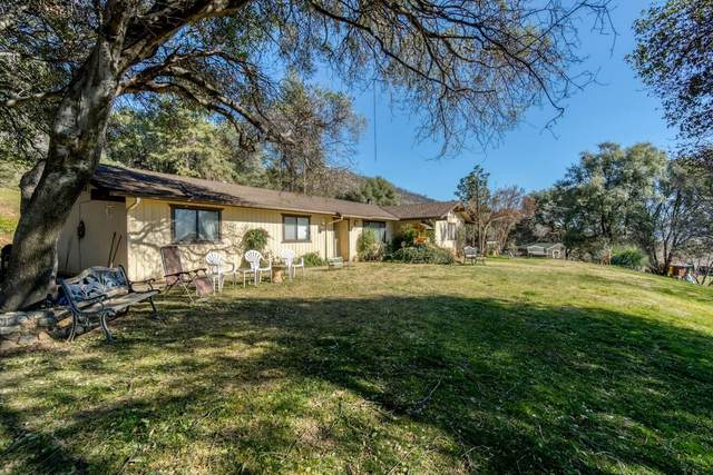 33491 Road 233, North Fork, CA 93643 (#537353) :: Raymer Realty Group