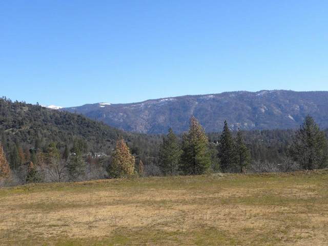 0-2.98 AC Teaford Saddle Road 223, North Fork, CA 93643 (#537521) :: Raymer Realty Group
