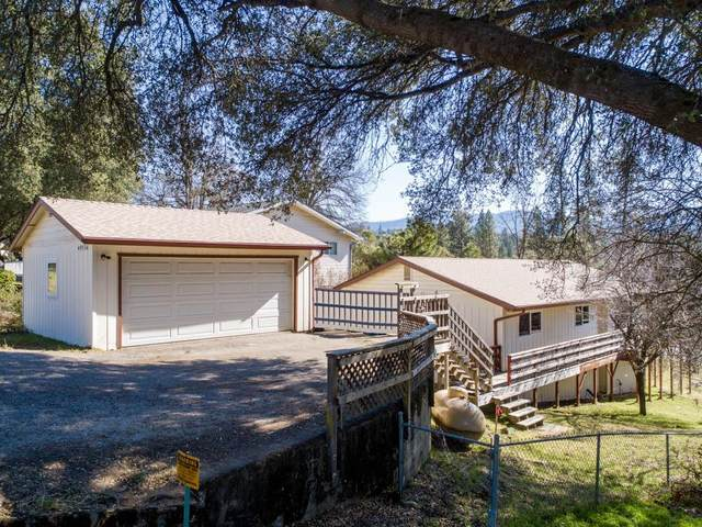 49524 Pierce Drive, Oakhurst, CA 93644 (#537632) :: Raymer Realty Group