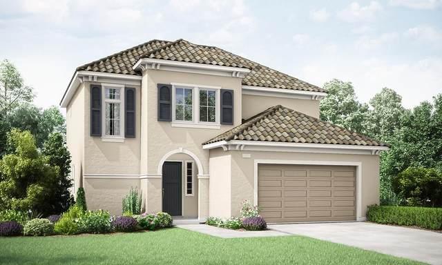 4285 Fairmont Avenue, Clovis, CA 93619 (#537717) :: Raymer Realty Group