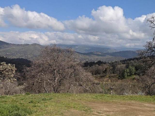 28181 Watts Valley (Big Springs) Road, Tollhouse, CA 93667 (#537831) :: FresYes Realty