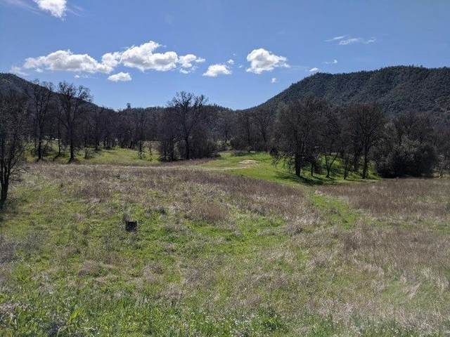 32705 Sycamore Road, Tollhouse, CA 93667 (#539601) :: Raymer Realty Group
