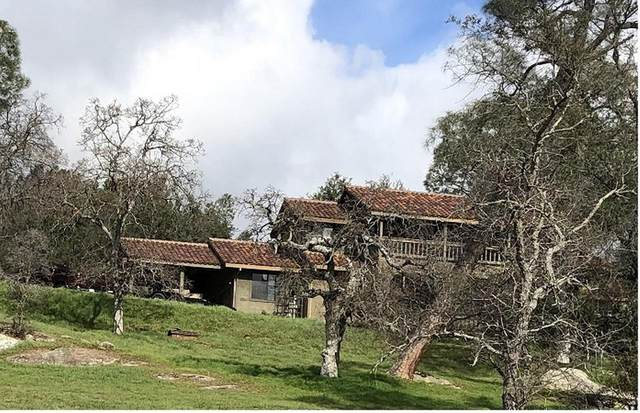 42079 Long Hollow Drive, Coarsegold, CA 93614 (#539765) :: Twiss Realty