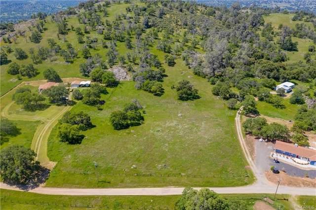3301 Elizabeth Lane, Catheys Valley, CA 95306 (#540810) :: FresYes Realty