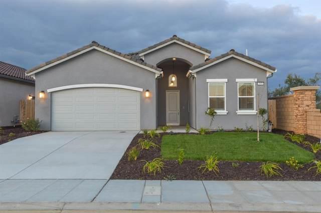 698 Mesa Drive S, Madera, CA 93636 (#542208) :: Raymer Realty Group