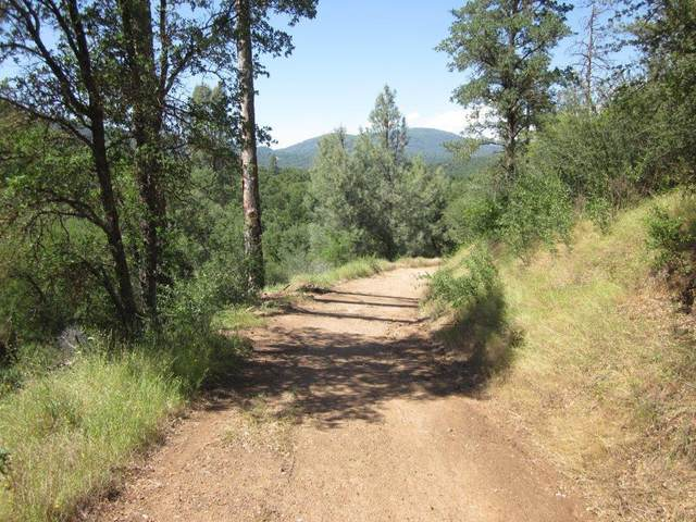 0-5.85AC Road 600, Ahwahnee, CA 93601 (#542346) :: Raymer Realty Group